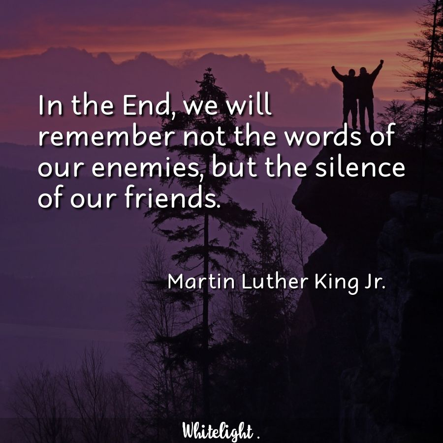 In the End, we will remember not the words of our enemies, but the silence of our friends. -Martin Luther King Jr.